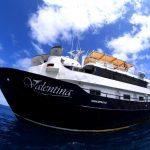 【2020~2021】自社船 バレンティーナ号で行く!世界遺産ソコロ諸島ダイビングツアー 12日間 最大18~20DV!!