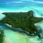 パラオダイビング・カープ島