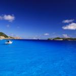 座間味島ダイビングツアー JAL利用 3泊4日 / 2DV+ホエールウォッチング付 *延泊可・フライトアレンジ可